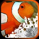 Aquarium fish maintenance training