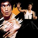 Brucelli style combat training
