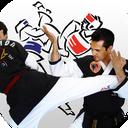 Hapkido & taekwondo