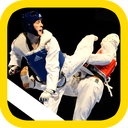 Taekwondo training (preliminary)