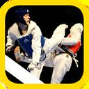 Taekwondo training (preliminary)