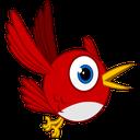 Bird Hunter 2016