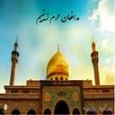 مدافعان حرم زینبیم