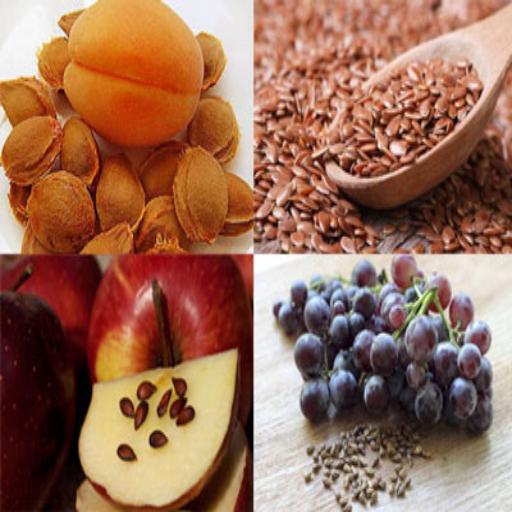 تجارت با هسته میوه ها