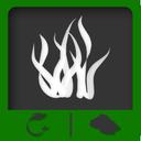 دانشنامه پرورش جلبک
