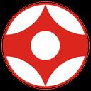 آموزش کامل کیوکوشین