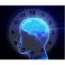 body's clock