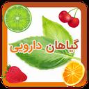 خواص گیاهان دارویی و میوه ها