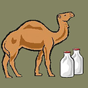 Treatment of diseases withcamelmilk