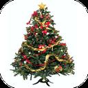 زیباترین درختهای کریسمس
