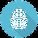 دانستنی هایی درباره مغز!