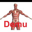 آناتومی بدن انسان - دمو