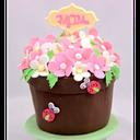 آموزش مراقبت از گل و گیاه
