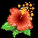 سفر به باغ گلها و آشنایی با گیاهان