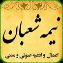 nime shaaban