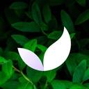 Deep Meditate: Meditation & Sleep App