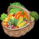 راهنمای نگهداری مواد غذایی