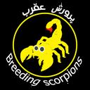 Education scorpion education