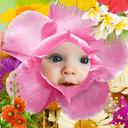 قاب عکس گلها