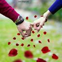 سفر به دیار عشق