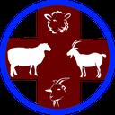 گوسفند و بز(بیماریها،پرورش ونژادها)