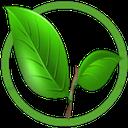 بیماریهای گوارشی و گیاهان درمانی
