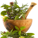 medical plants YHL