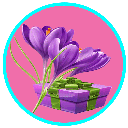 Saffron breeding