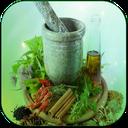 عطاری گیاهان دارویی