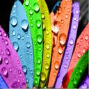 درباب رنگها
