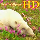 پس زمینه زنده خرس HD Bear