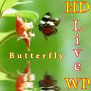 HD Butterfly Live Wallpaper