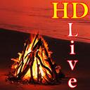 پس زمینه زنده آتش کمپ HD Campfire