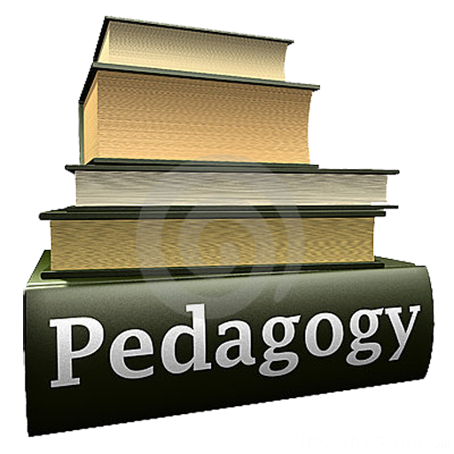 the meaning of the word andragogy essay