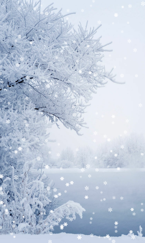 Winter Wallpaper Download Install Android Apps Cafe Bazaar