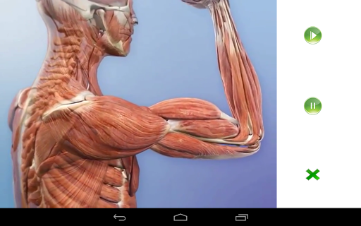 Visual Anatomy Free - Download | Install Android Apps | Cafe Bazaar