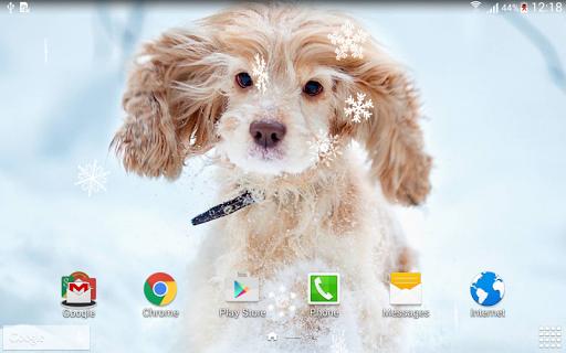Cute Winter Live Wallpaper - Download