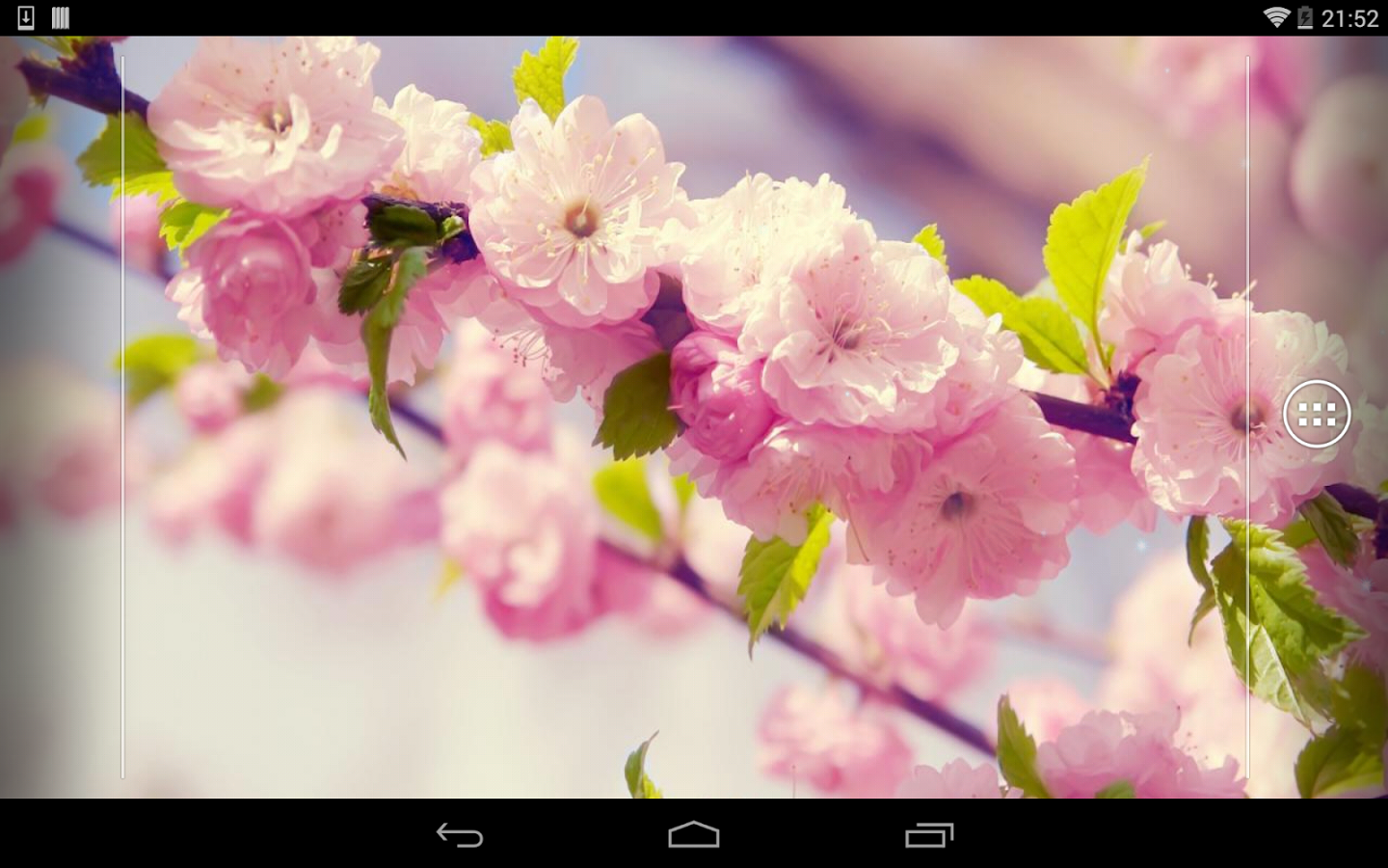 Spring Flowers Download Install Android Apps Cafe Bazaar