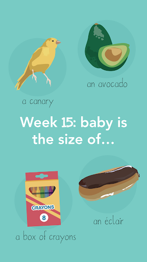 pregnancy tracker by due date