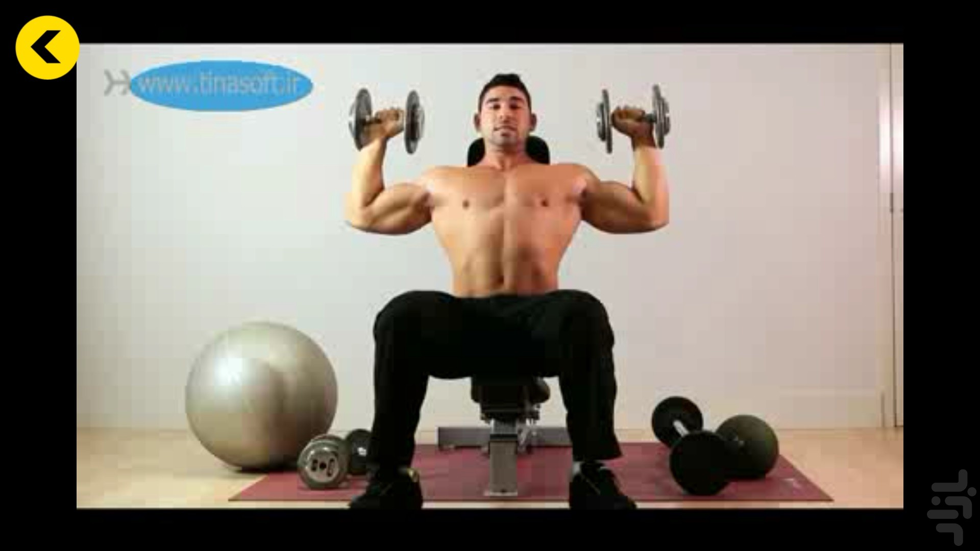 Arm Workout in bodybuilding