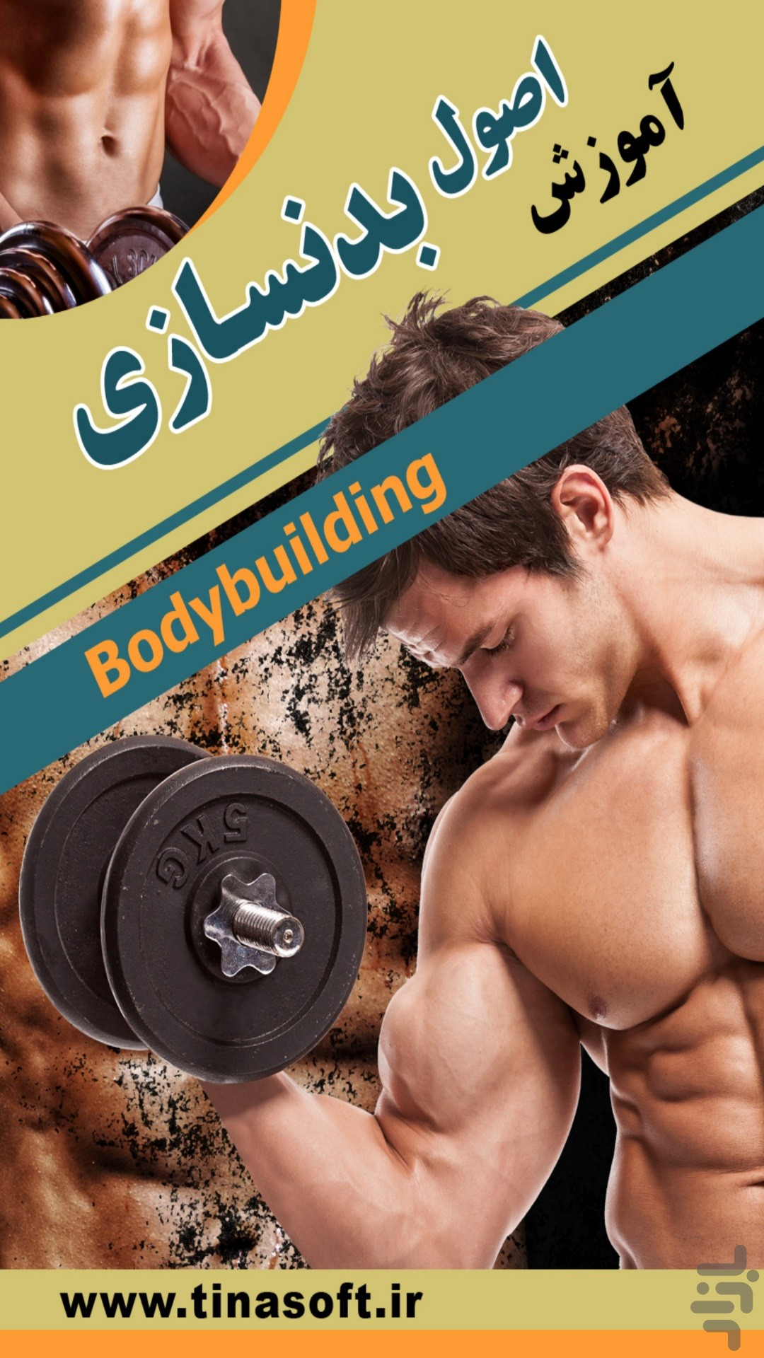 Learn the basics of bodybuilding