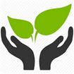 گیاهان دارویی +(طرز استفاده )