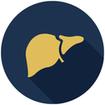 درمان کامل کبد چرب با روش های مختلف