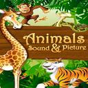 صدای حیوانات برای بچه ها