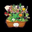 فروشگاه سبزیجات کیسار