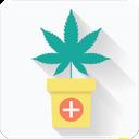 کدوم گیاه برای کدوم بیماری؟