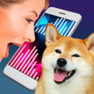 Dog Translator Simulator