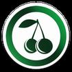 کافه میوه - خرید آنلاین میوه