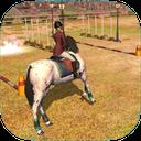 اسب سوار حرفه ای 3