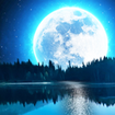 Relaxing Music: Sleep Sounds